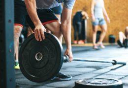 Budowa wartościowej muskulatury